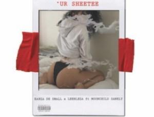 Kabza De Small X Leehleza - Ur Sheetee ft. Moonchild Sanelly